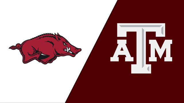 Arkansas vs. Texas A&M (Swimming)
