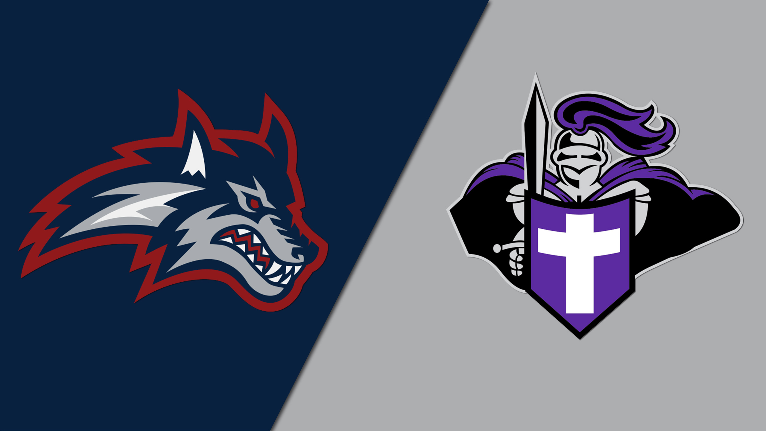 Stony Brook vs. Holy Cross (Semifinal #1) (Hall of Fame Tip-Off)