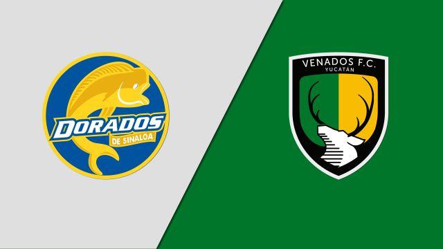 In Spanish-Dorados de Sinaloa vs. Venados FC (Jornada 4) (Ascenso MX)