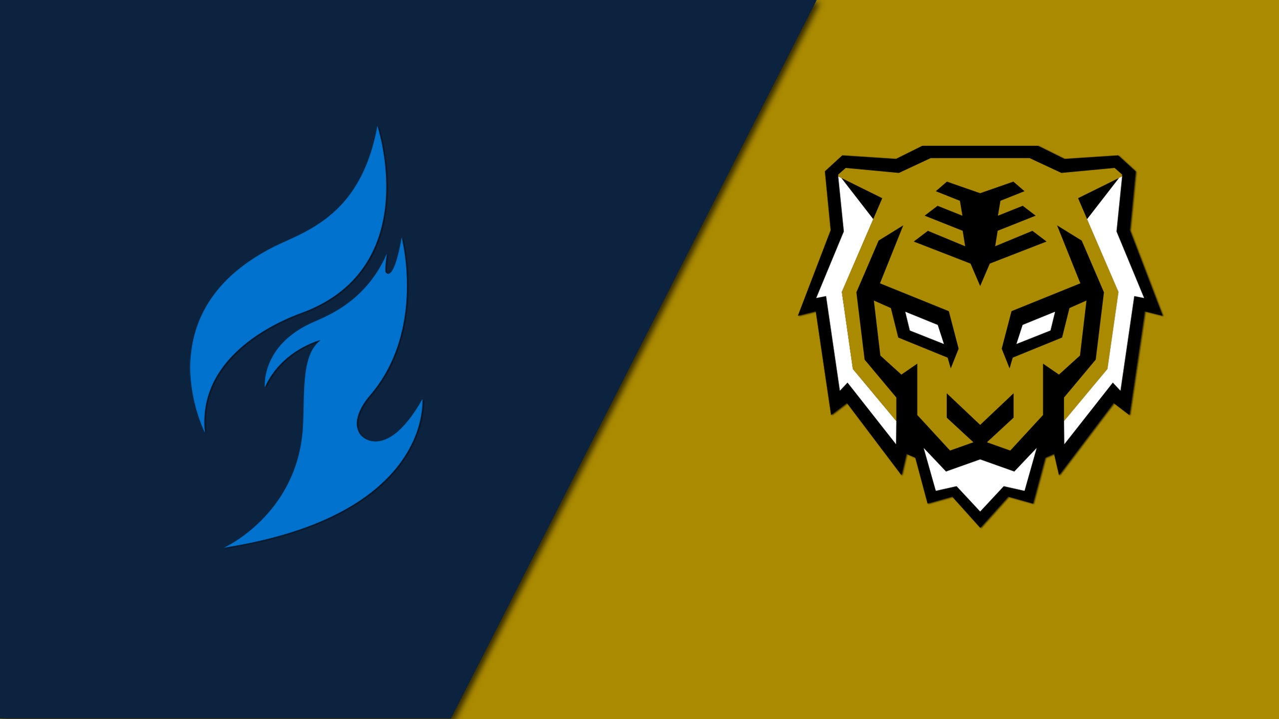 Dallas Fuel vs. Seoul Dynasty