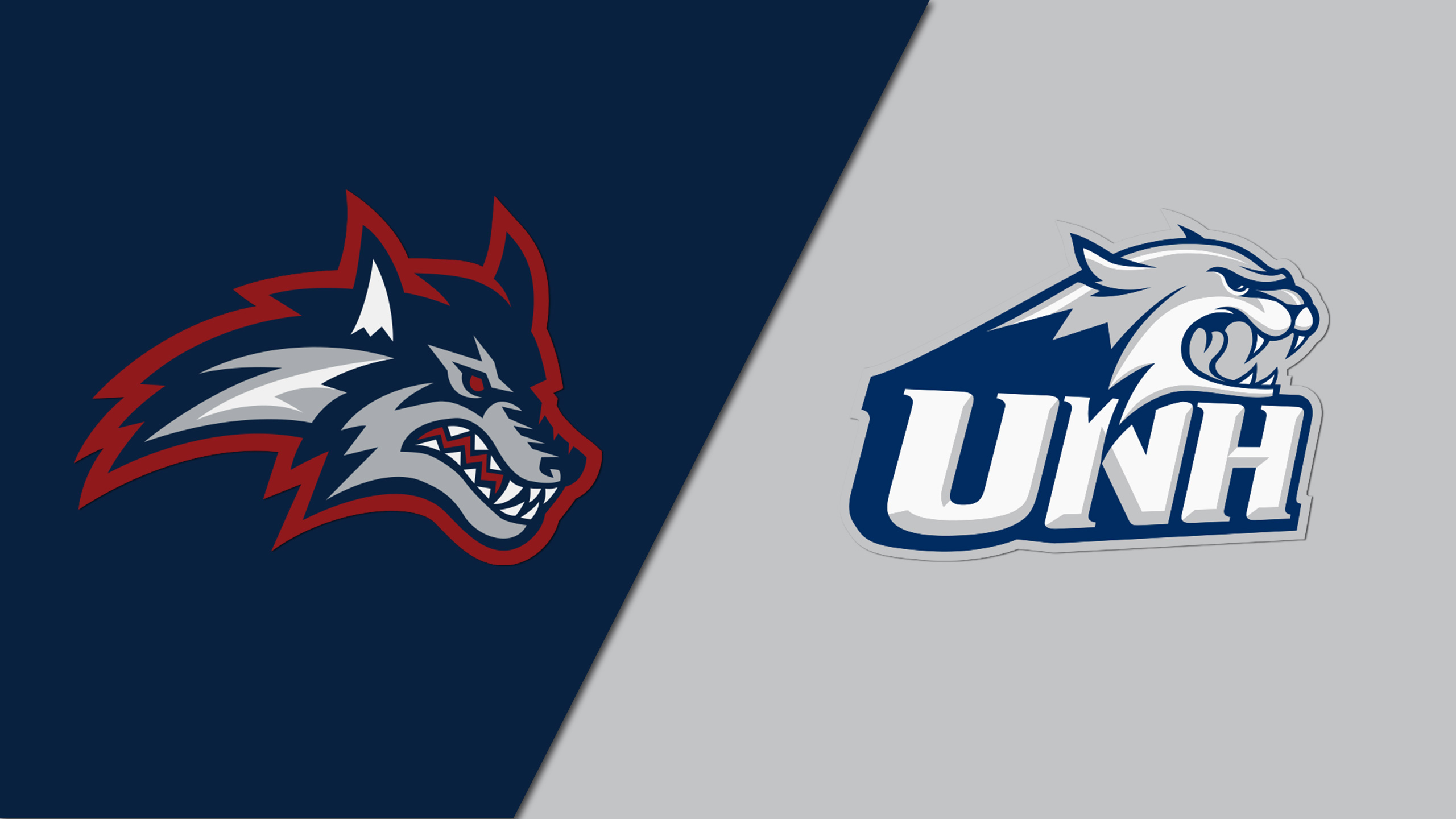 Stony Brook vs. New Hampshire (M Basketball)