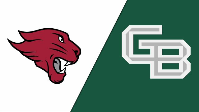 Concordia (Chicago) vs. Green Bay (M Basketball)