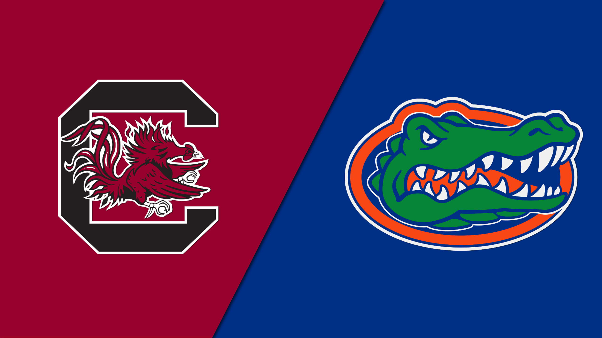 South Carolina vs. Florida (Baseball)