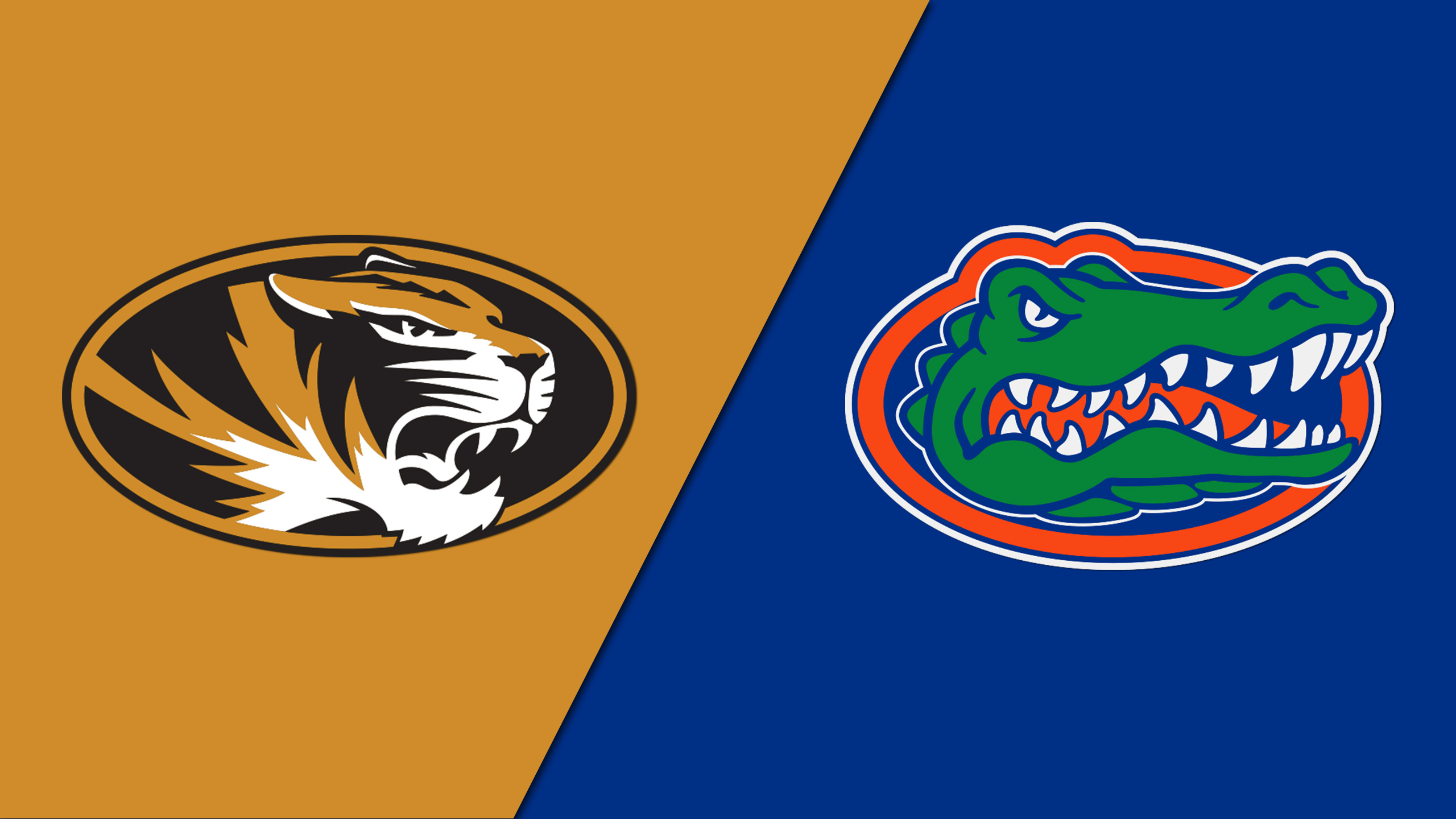 Missouri vs. Florida (M Basketball)