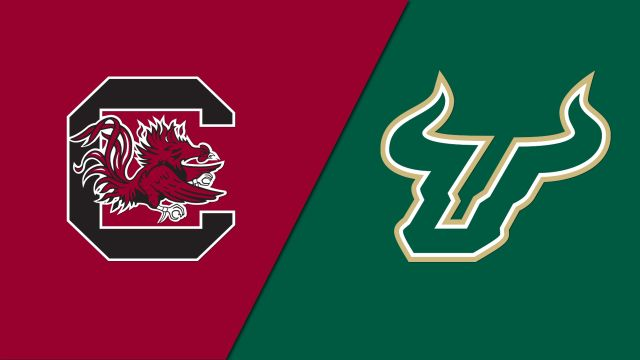 South Carolina vs. South Florida (Site 12 / Game 5) (NCAA Softball Regionals)