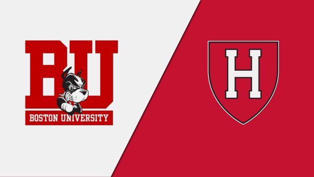 Boston University vs. Harvard (Court 2)