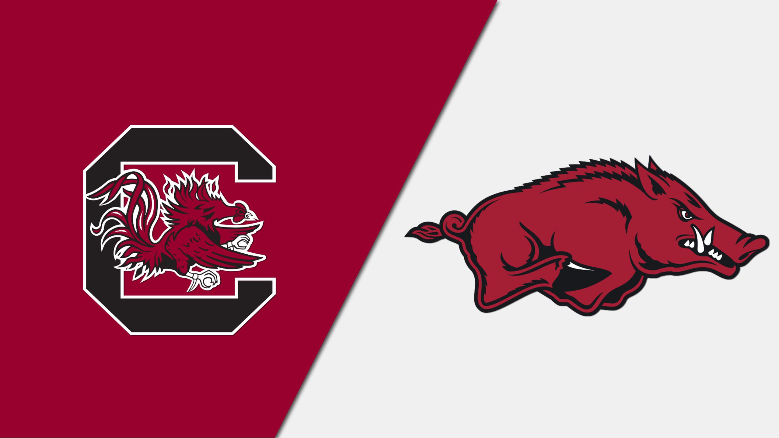 #16 South Carolina vs. Arkansas (W Basketball)