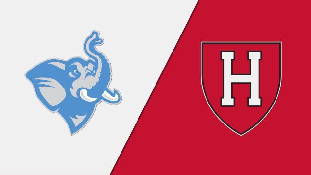 Tufts vs. Harvard (Court 4) (Women's College Squash)