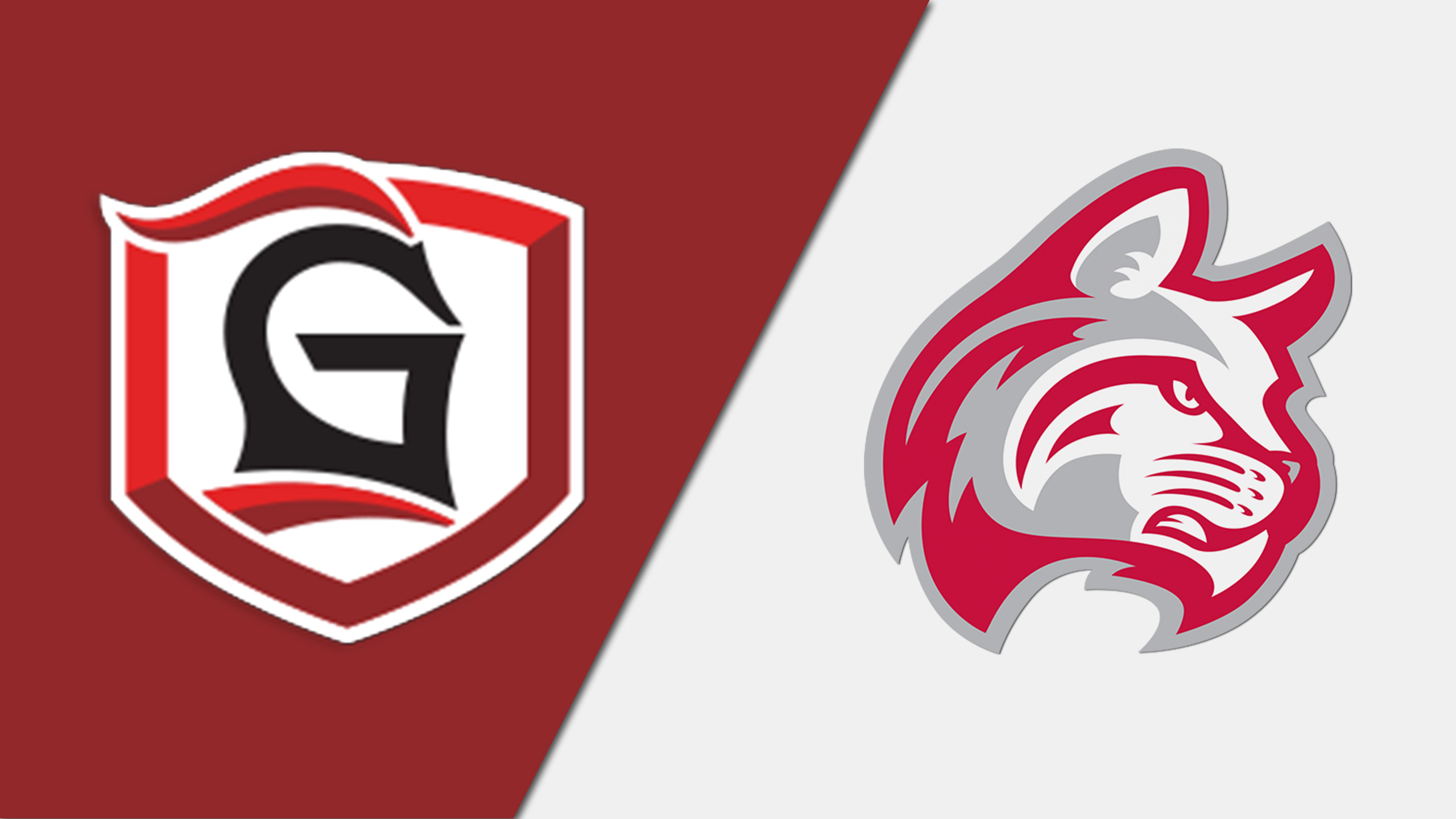 Grace University (IN) vs. Indiana Wesleyan (W Basketball)