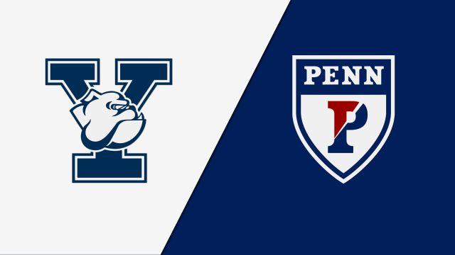 #5 Yale vs. #4 Pennsylvania (Quarterfinal)