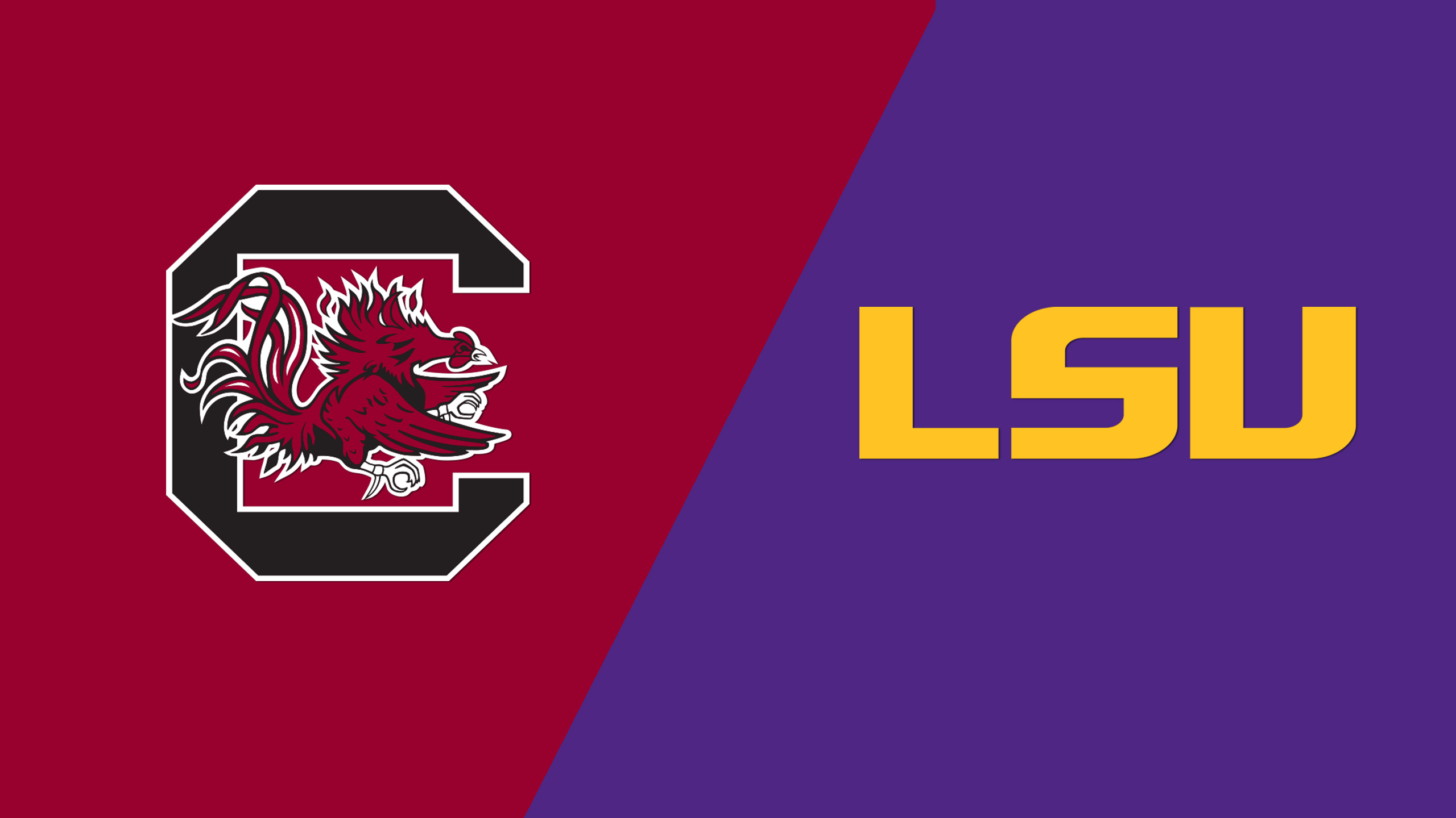 South Carolina vs. LSU (M Basketball) (re-air)