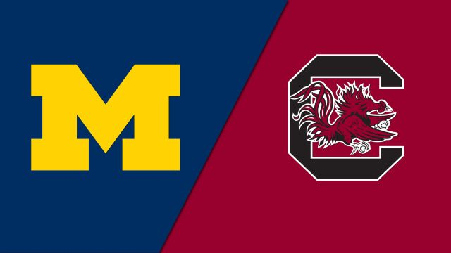 #6 Michigan vs. #22 South Carolina (Softball)