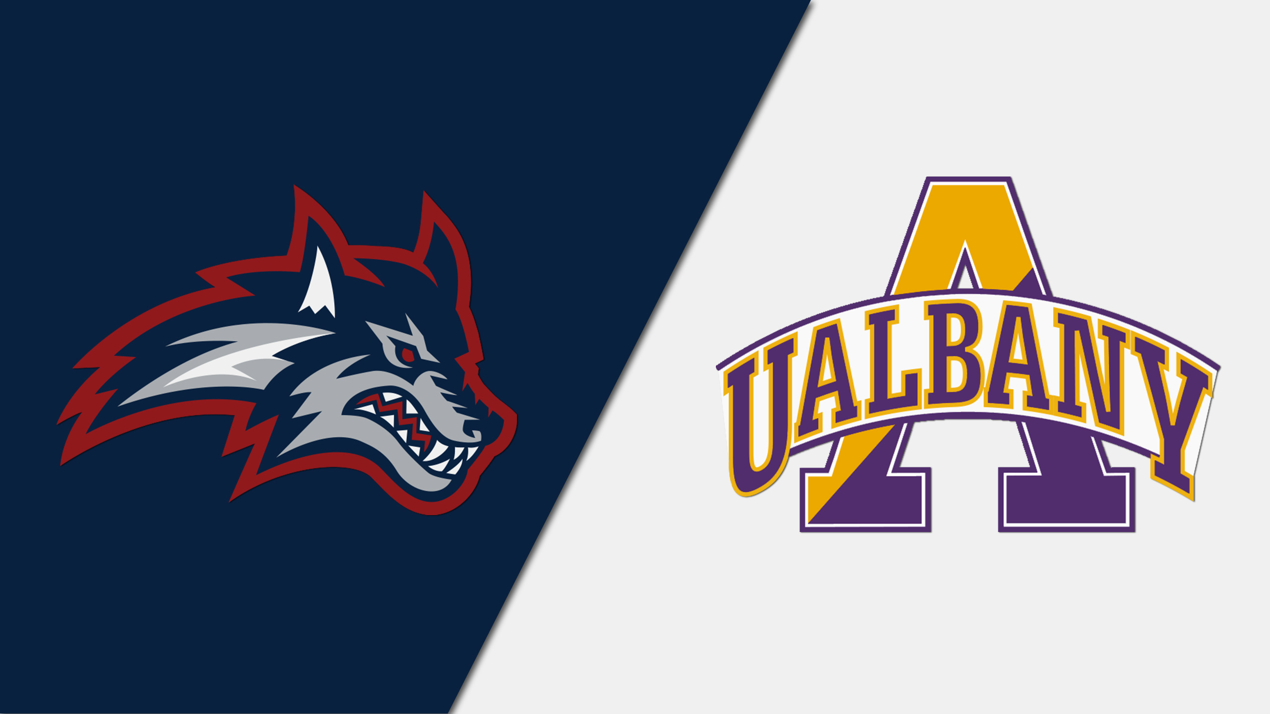 Stony Brook vs. Albany (M Basketball)