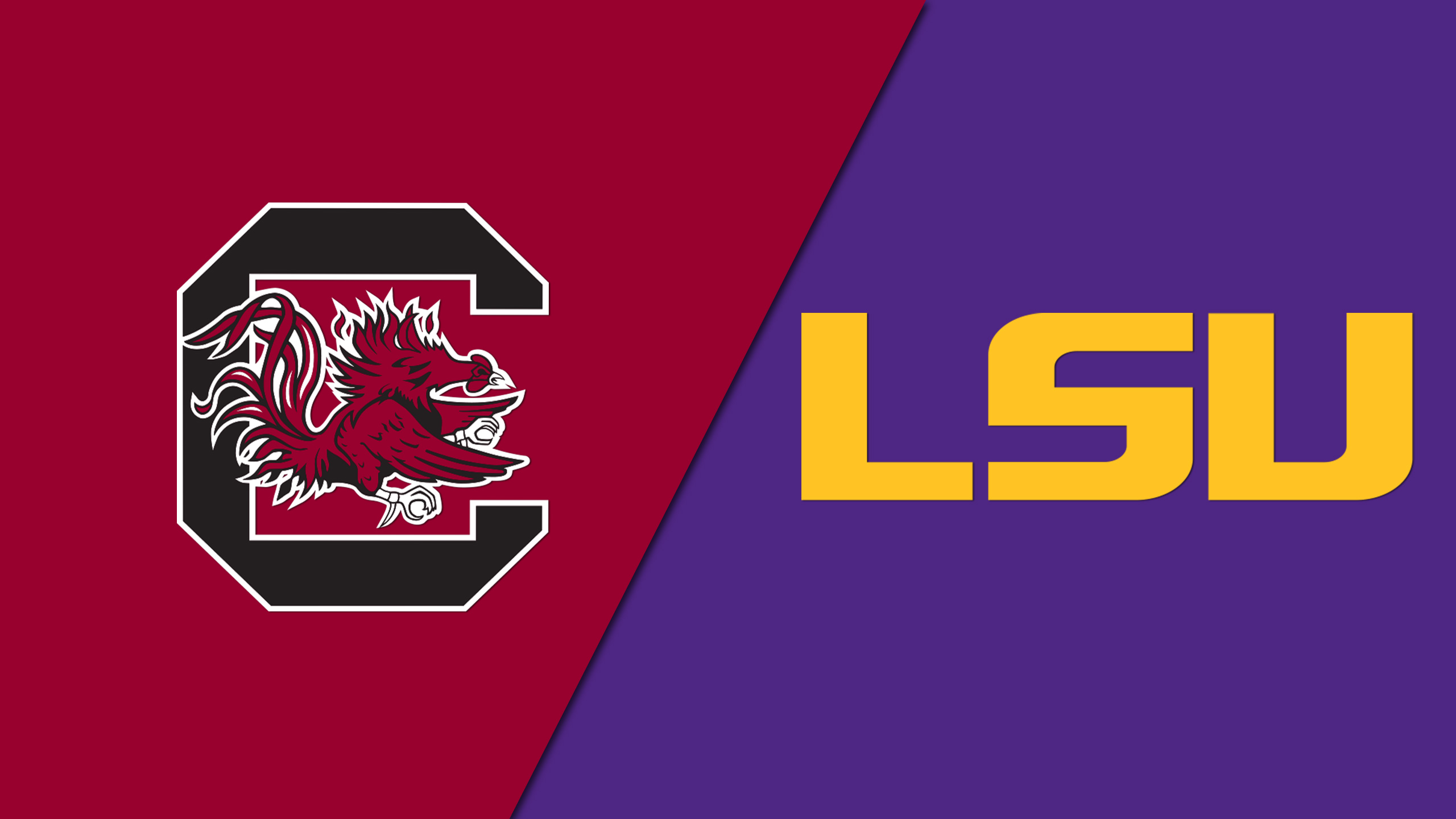 South Carolina vs. LSU (W Volleyball)