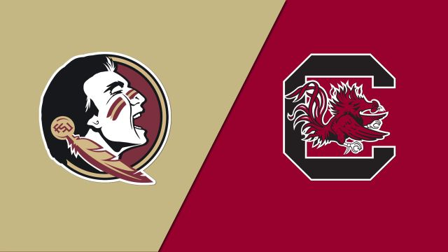 #4 Florida State vs. South Carolina (Site 12 / Game 6) (NCAA Softball Regionals)