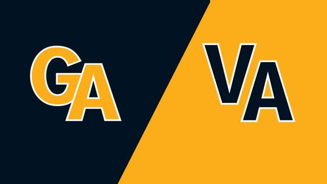 Peachtree City, GA vs. South Riding, VA (Southeast Regional Final) (Little League World Series)