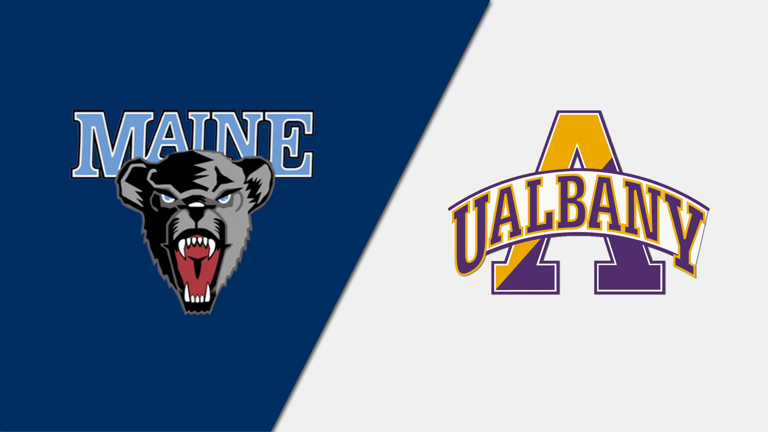 Maine vs. Albany (W Basketball)