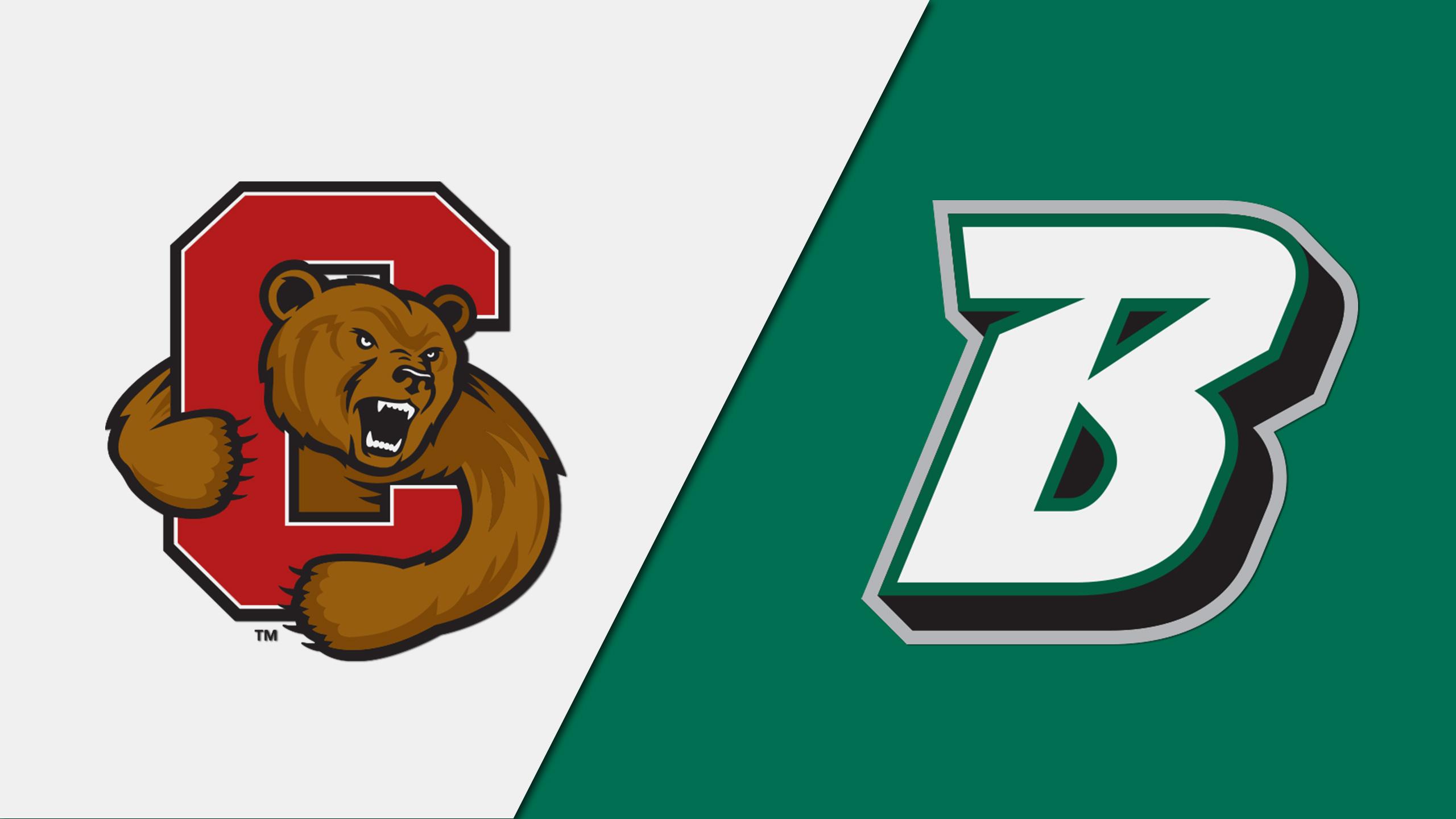 Cornell vs. Binghamton