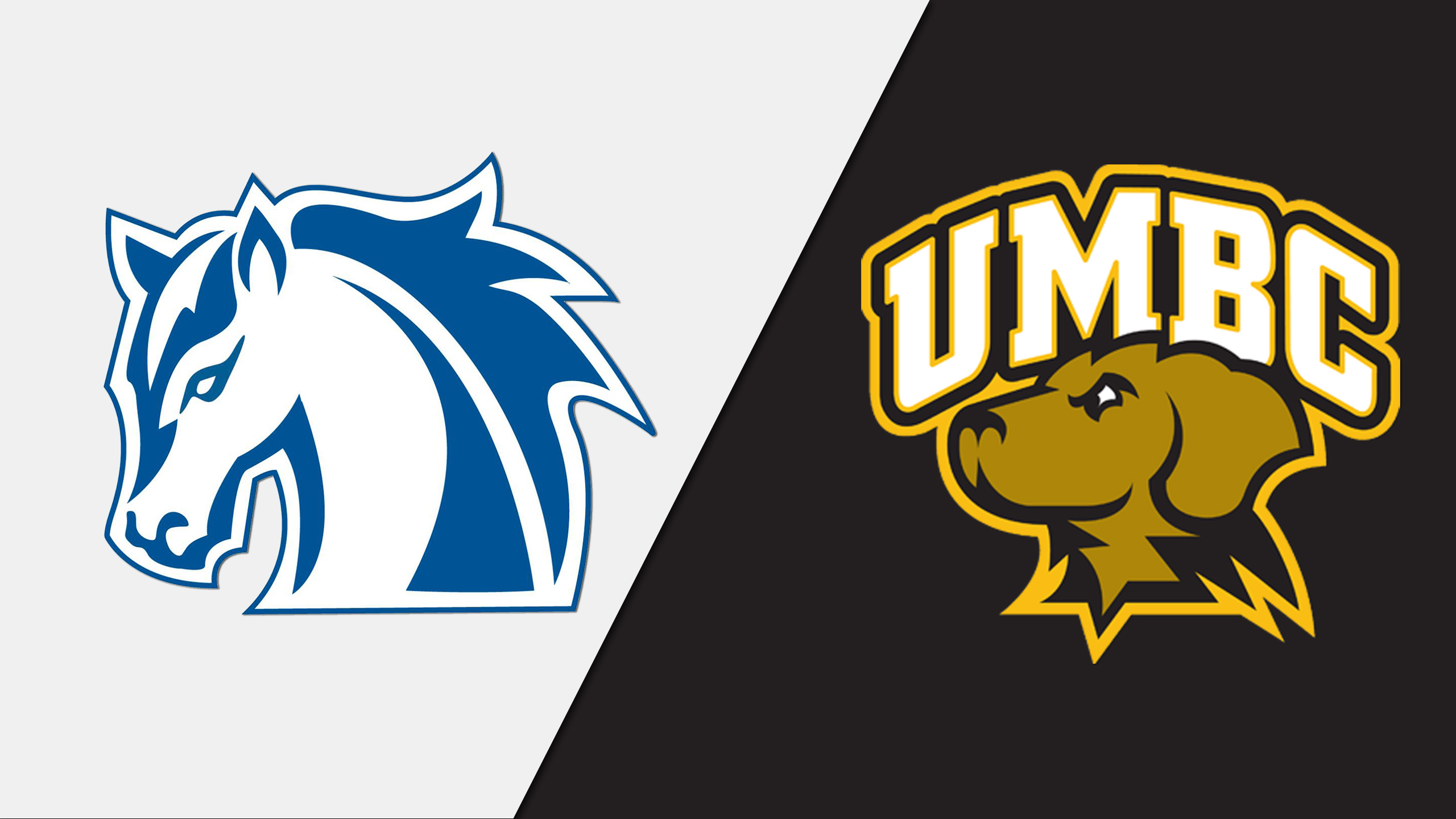 Hood vs. UMBC (M Basketball)