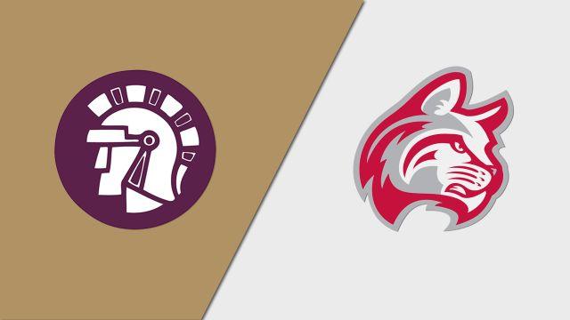 Taylor (IN) vs. Indiana Wesleyan (M Basketball)