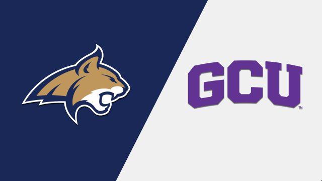 Montana State vs. Grand Canyon (M Basketball)