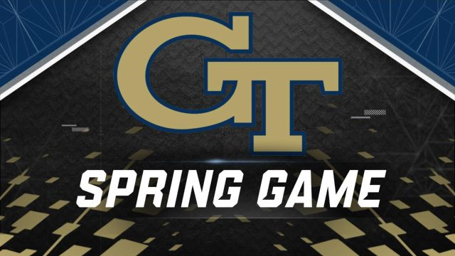 Georgia Tech Spring Football Game