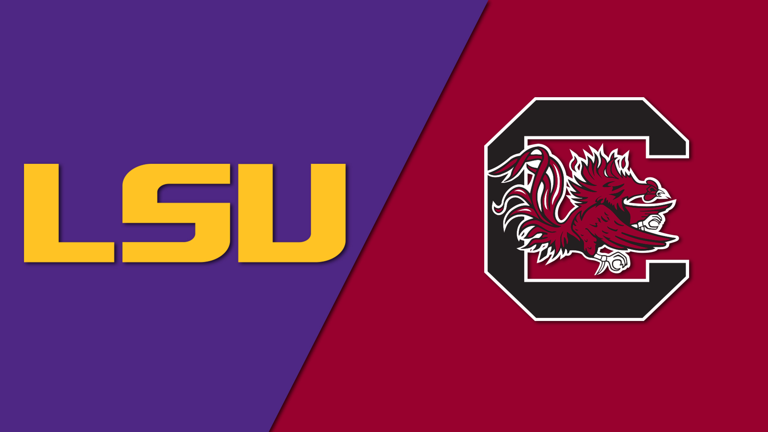LSU vs. South Carolina (W Volleyball)