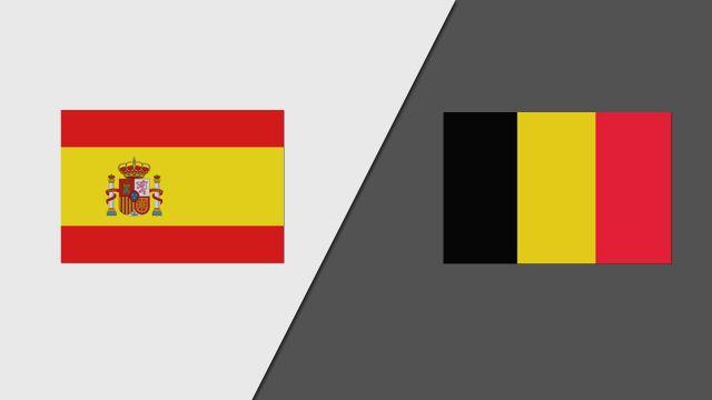Spain vs. Belgium (Group Stage)
