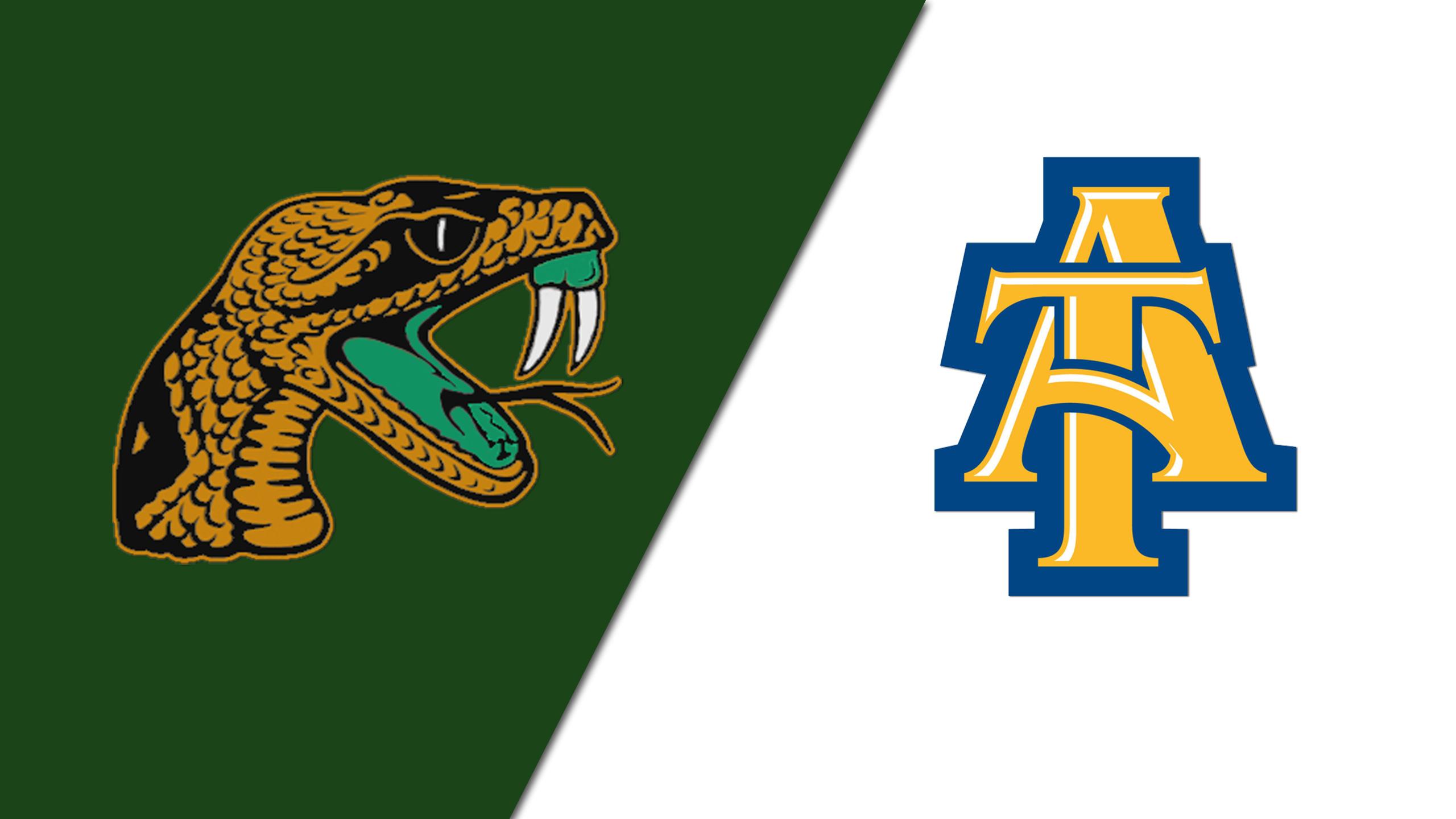 Florida A&M vs. North Carolina A&T (Football)