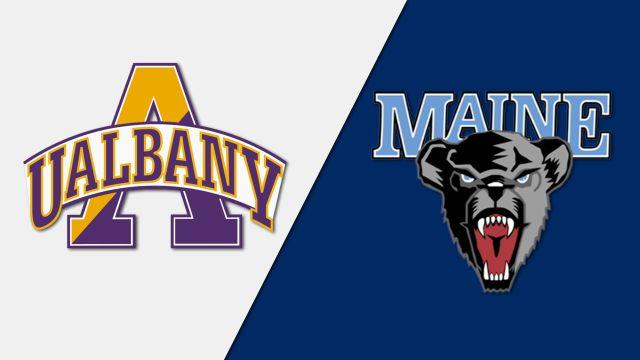 Albany vs. Maine (Field Hockey)