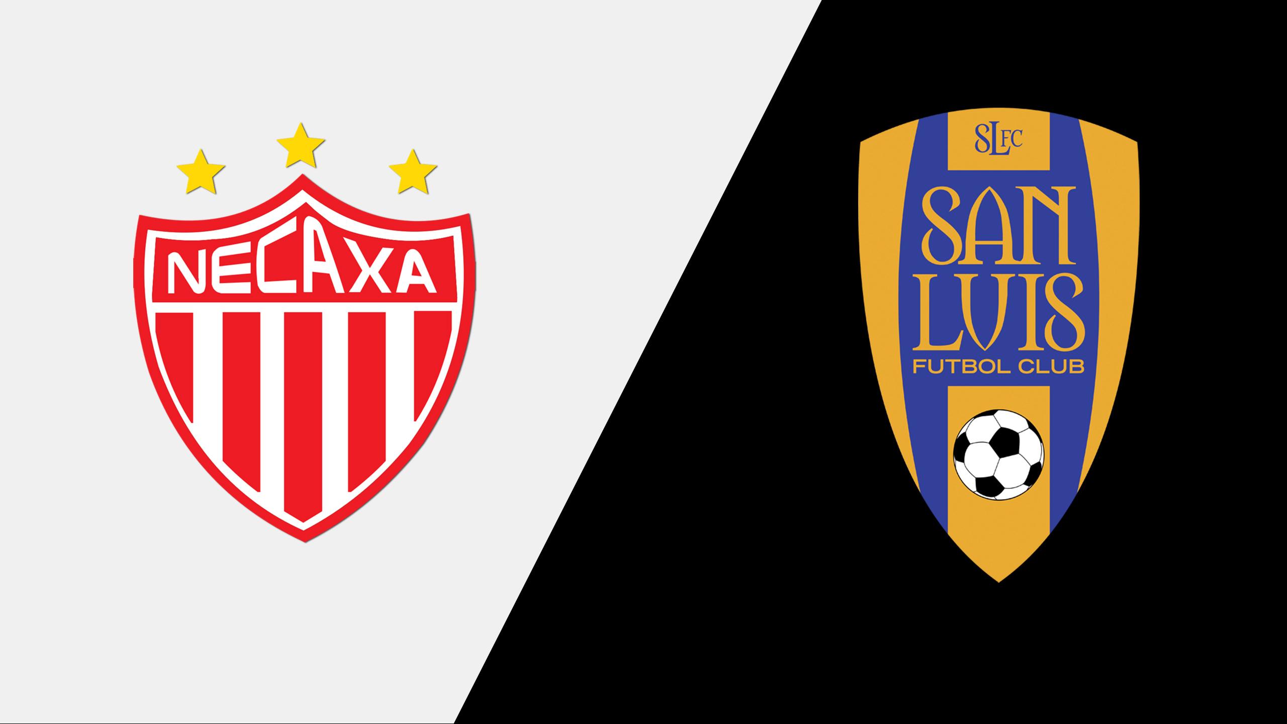 Rayos del Necaxa vs. Atlético San Luis (Jornada 6)