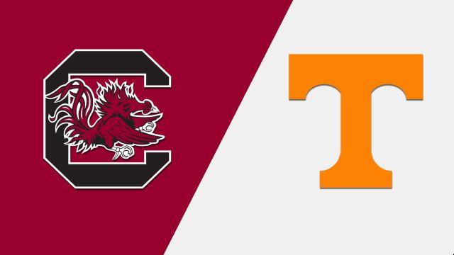 South Carolina vs. #22 Tennessee (Baseball)