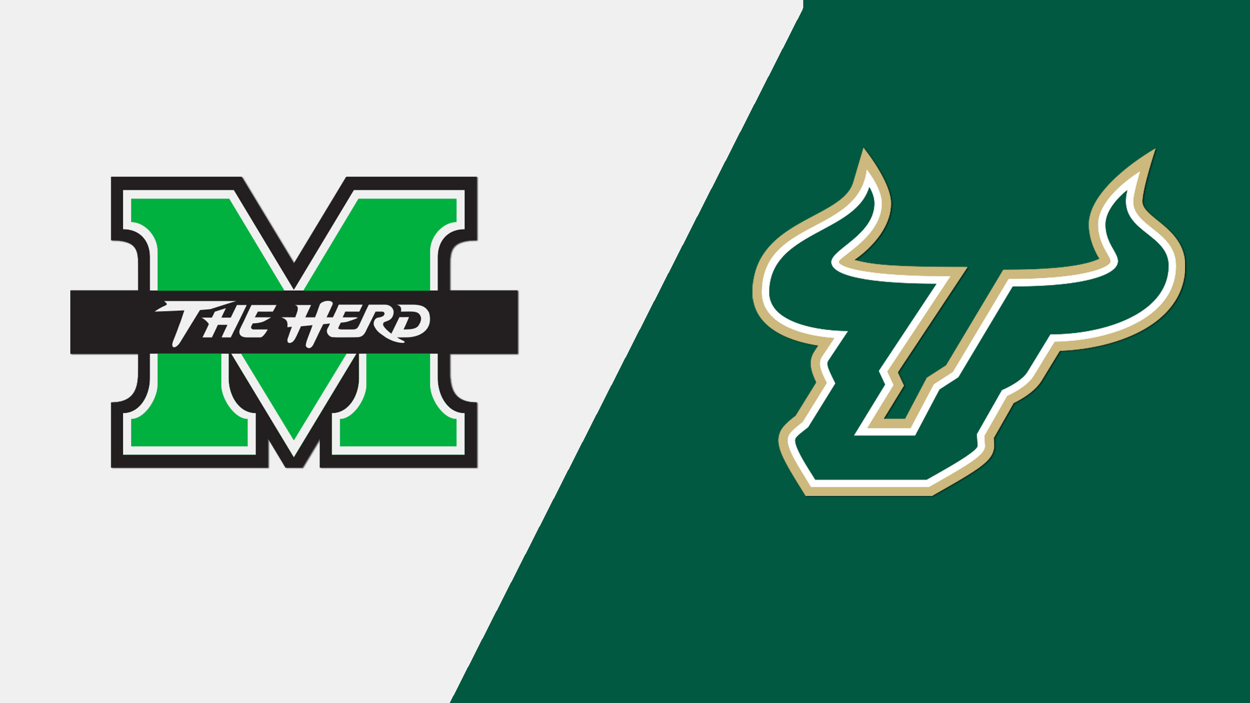 Marshall vs. South Florida (Bad Boy Mowers Gasparilla Bowl)