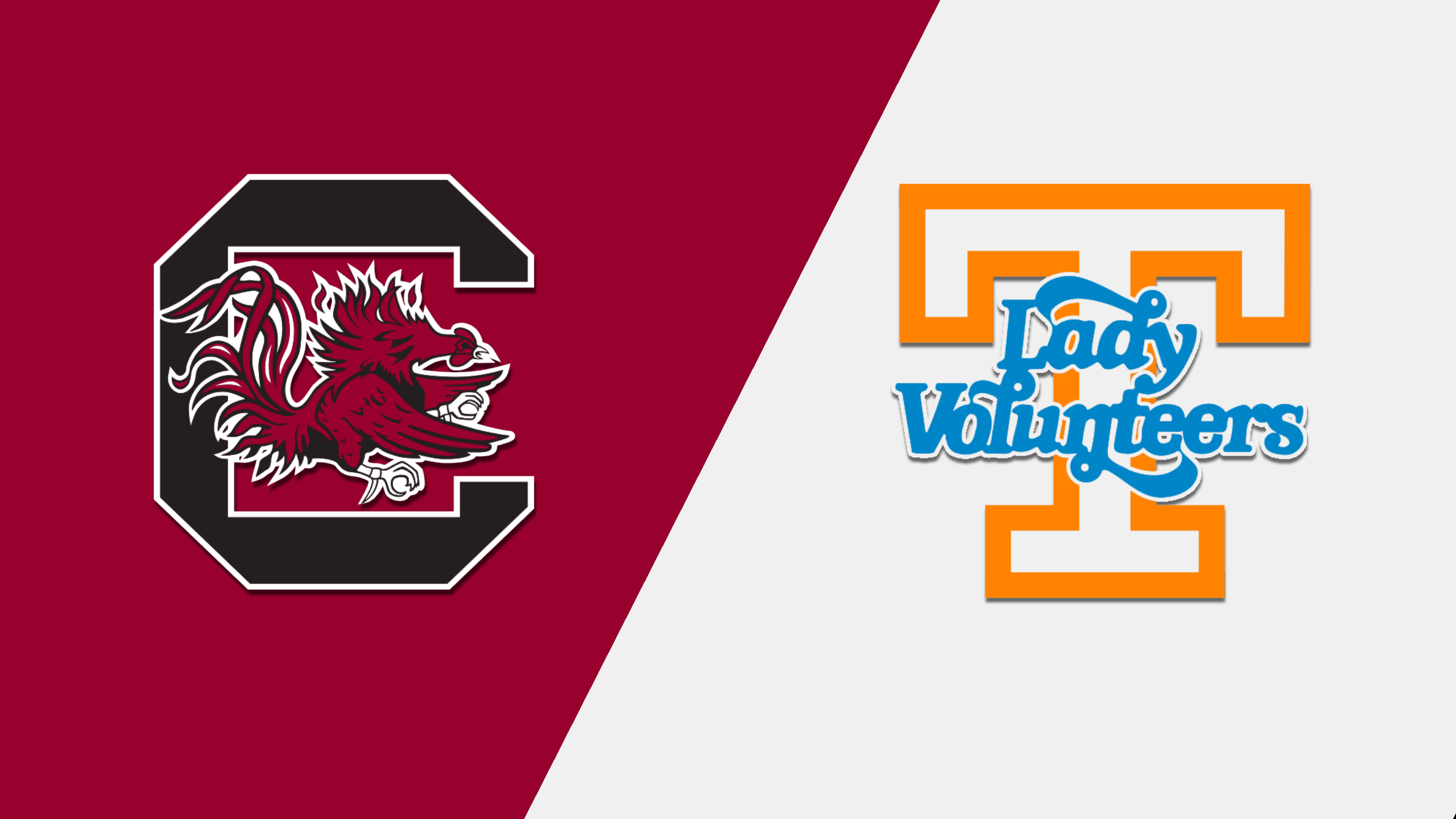 #13 South Carolina vs. Tennessee (W Basketball)