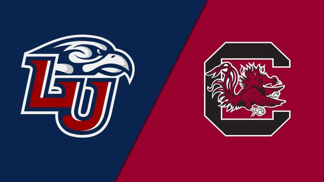 Liberty vs. South Carolina (Baseball)