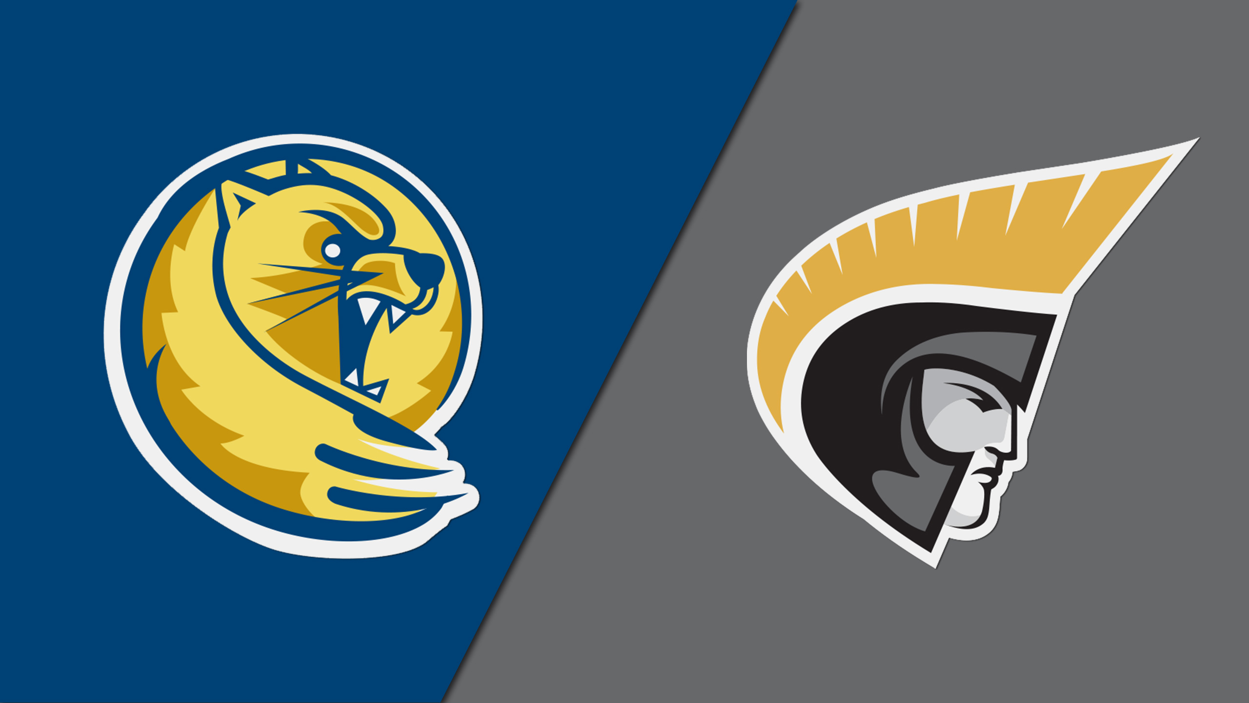 Lander vs. Anderson (NCAA DII Women's Volleyball Southeast Regional Tournament)