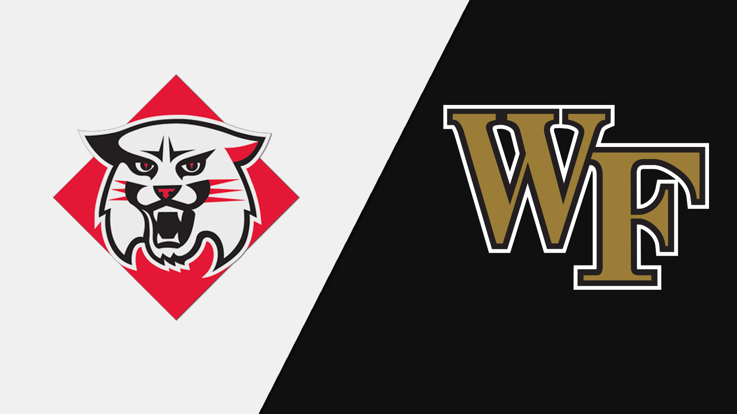 Davidson vs. Wake Forest (M Basketball) (re-air)