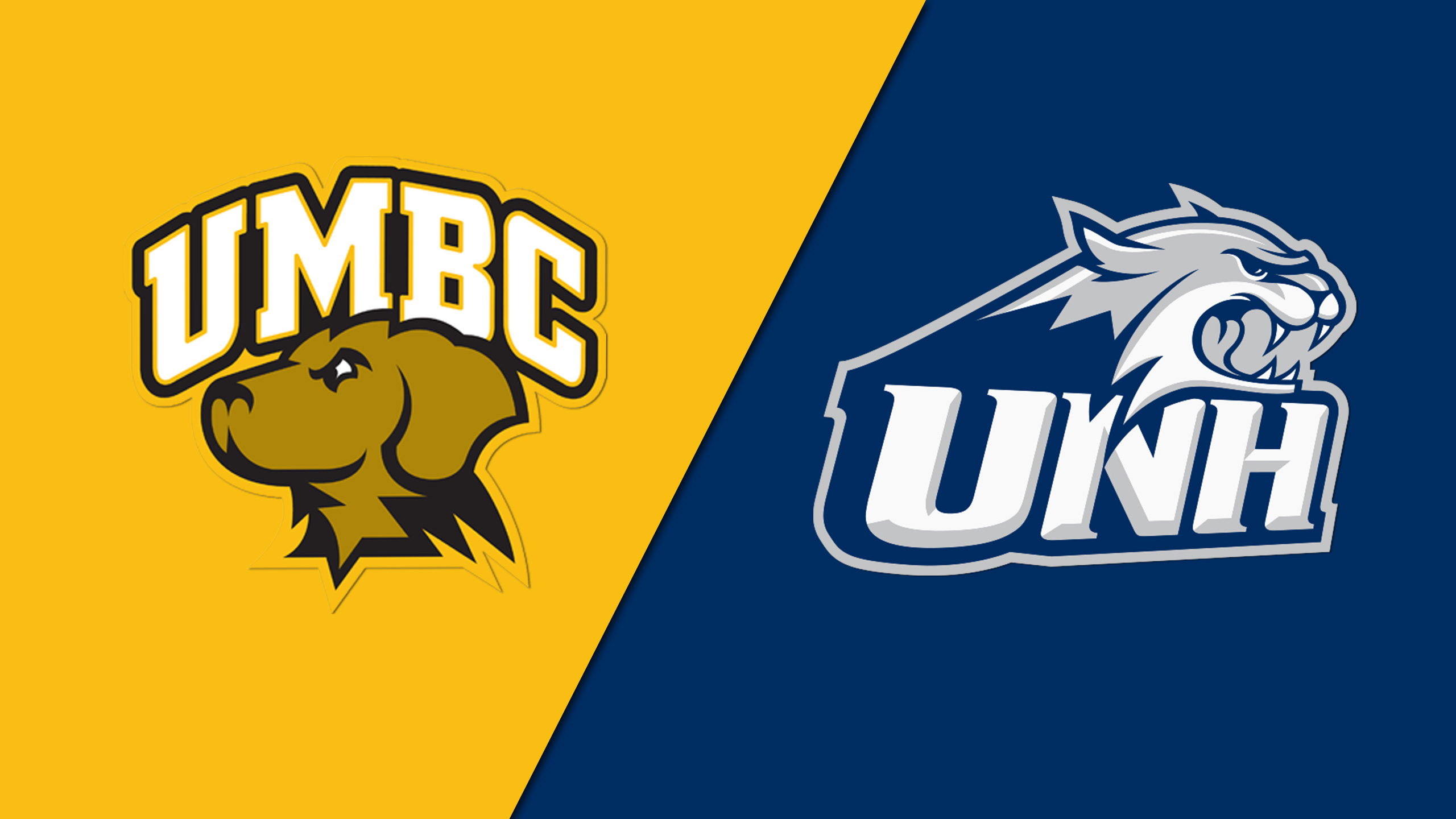 UMBC vs. New Hampshire (Championship) (America East Men's Soccer Tournament)