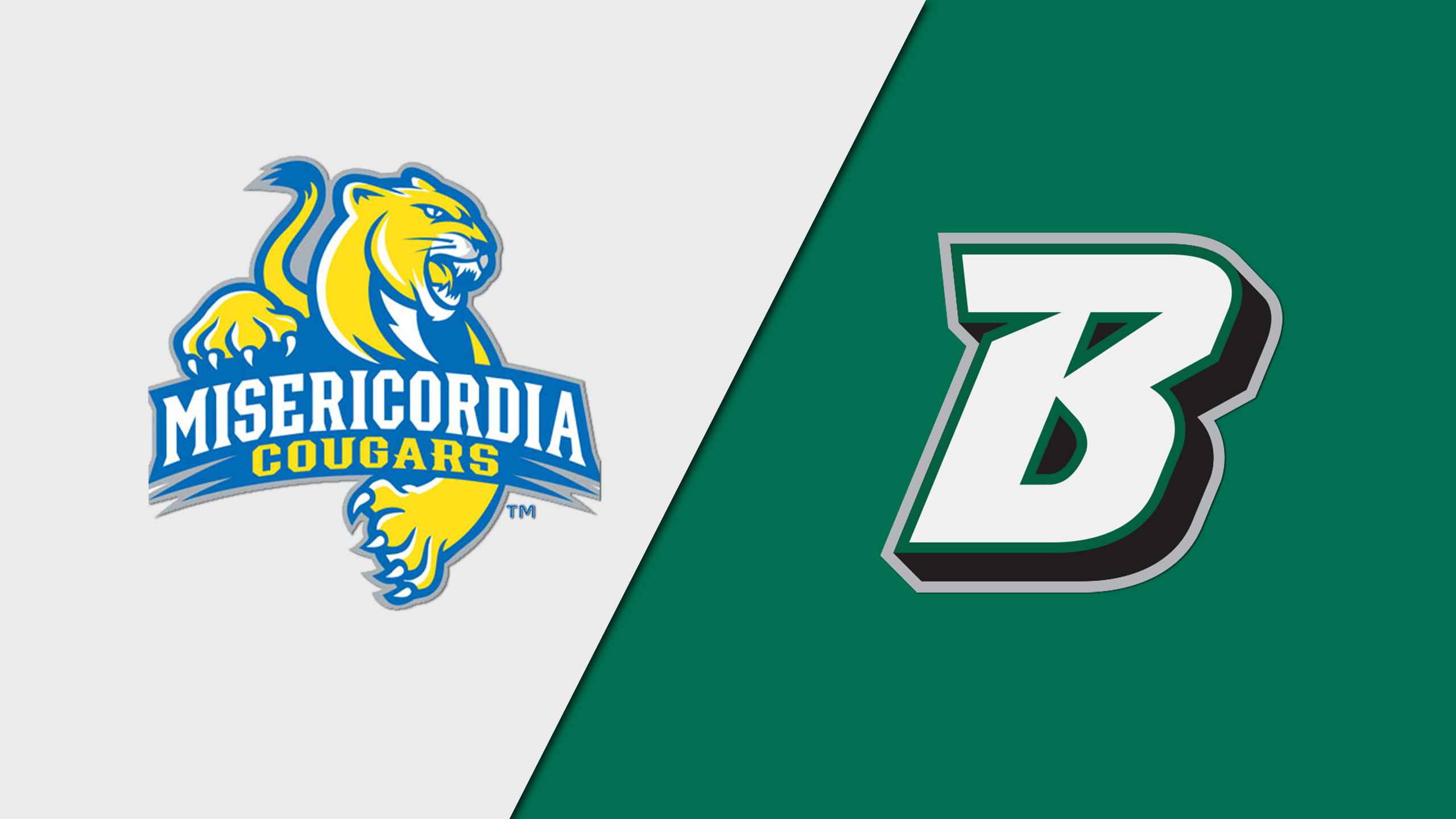 Misericordia vs. Binghamton (M Basketball)
