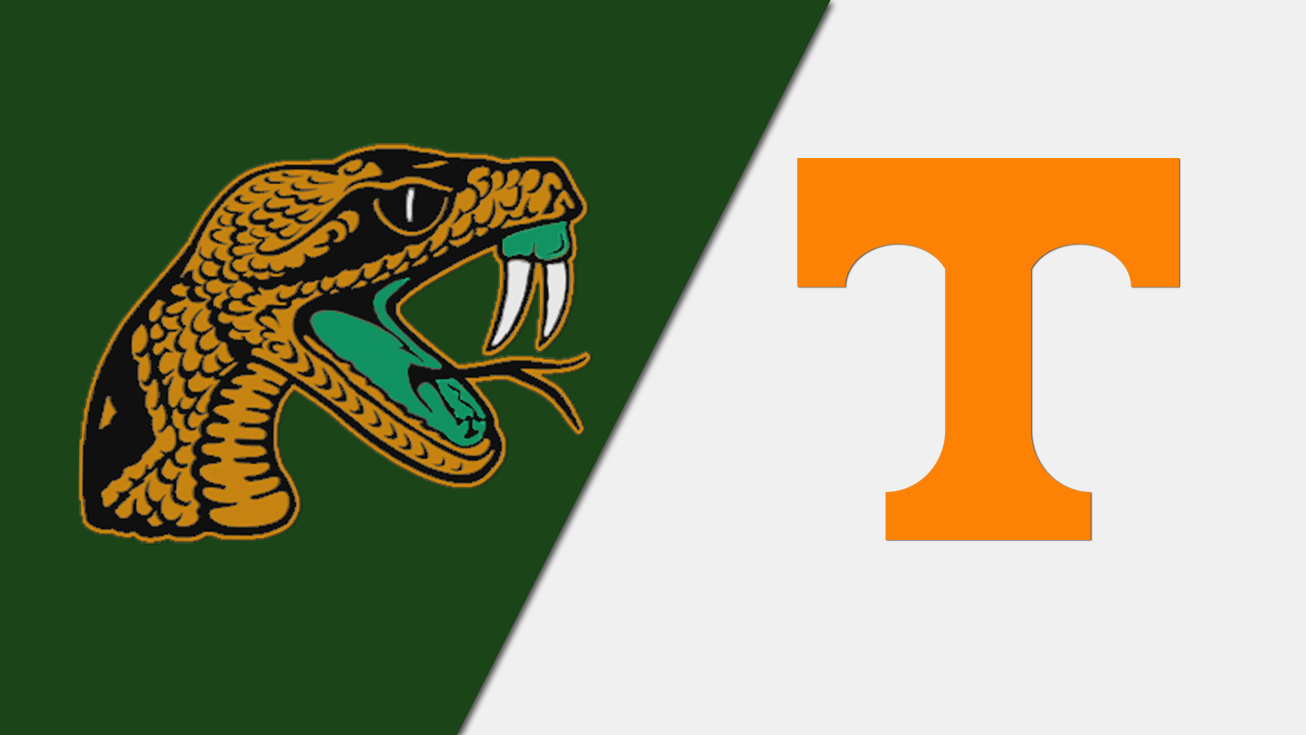 Florida A&M vs. #12 Tennessee (W Basketball)