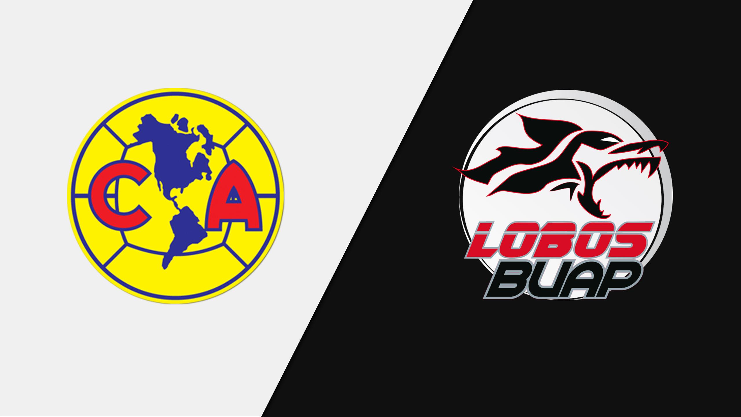 Aguilas del America vs. Lobos BUAP (Jornada 8)