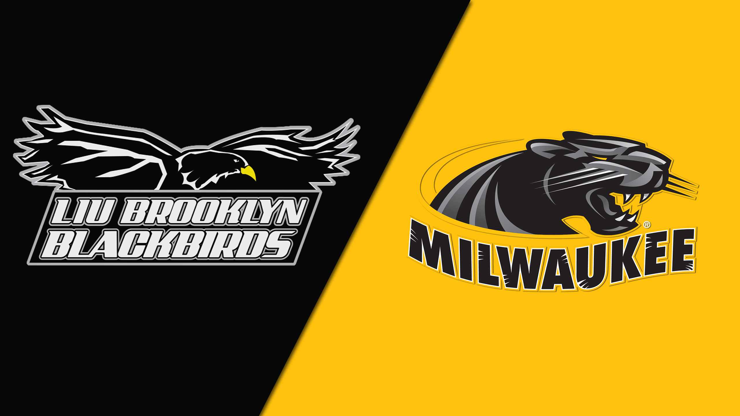 LIU Brooklyn vs. Milwaukee (M Basketball)