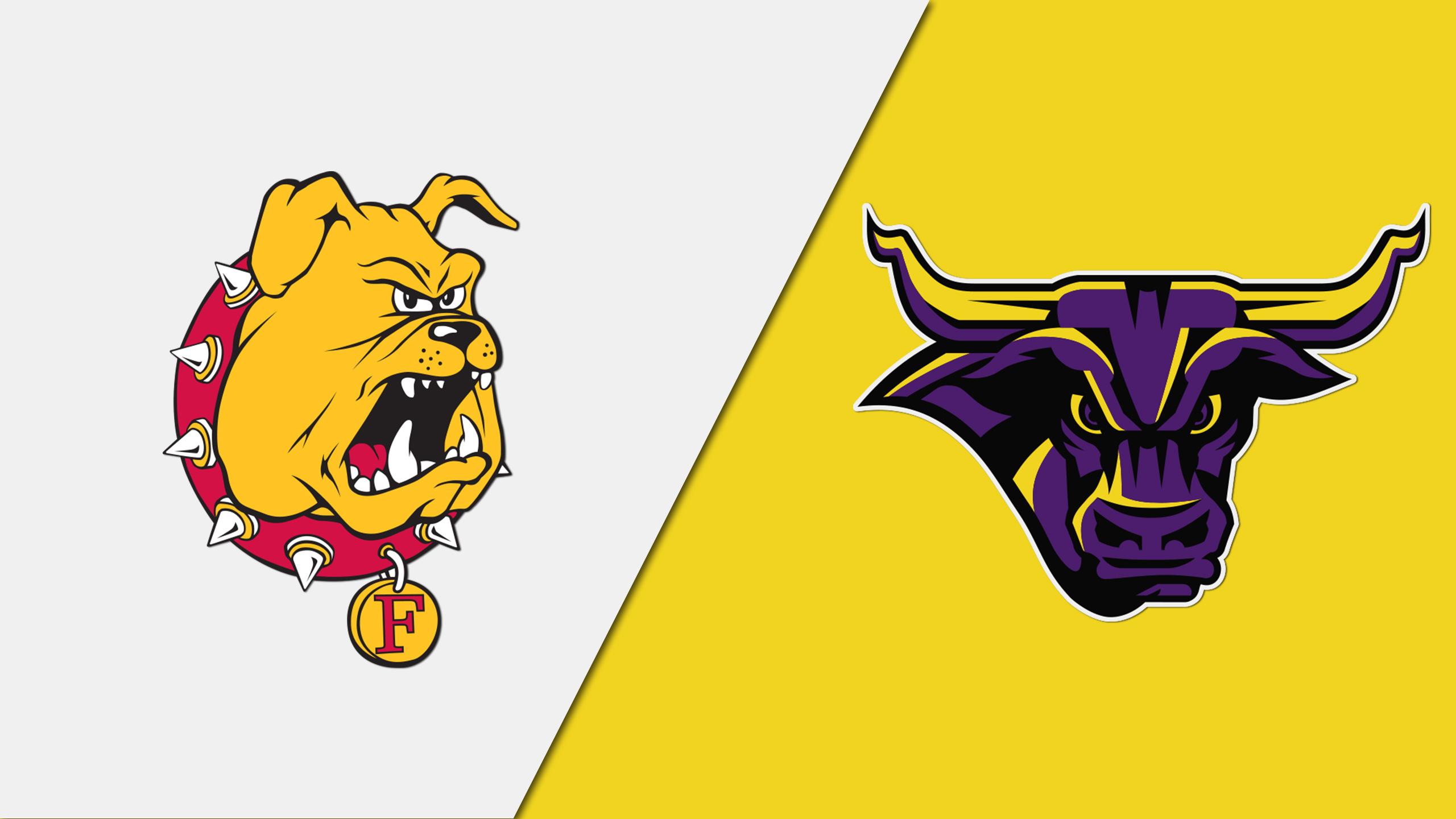 Ferris State (MI) vs. Minnesota State Mankato (Semifinal #2) (NCAA Division II Football Championship)