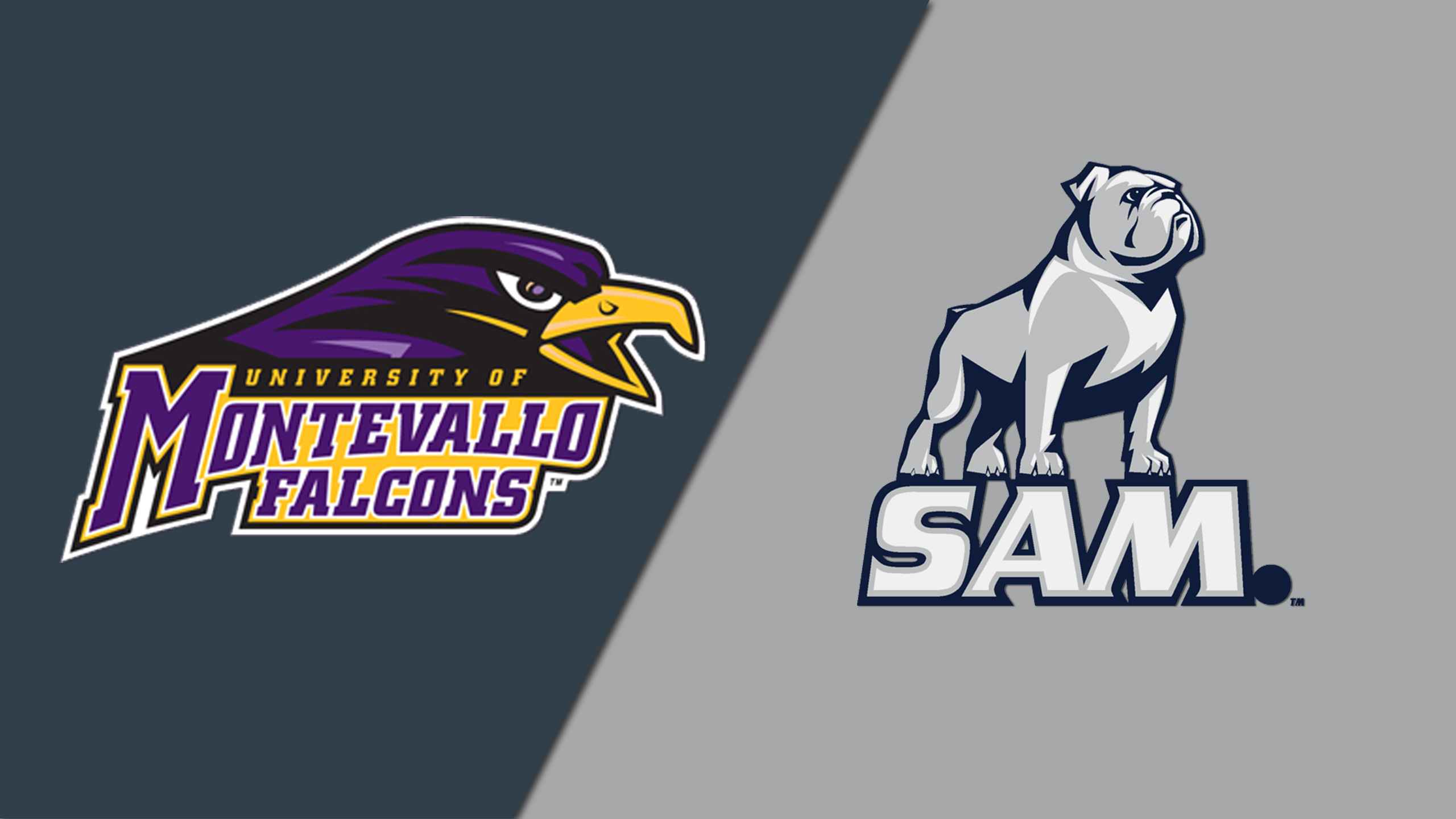 Montevallo vs. Samford (W Basketball)