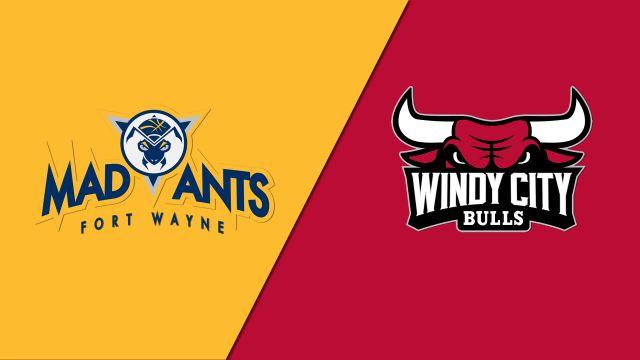 Fort Wayne Mad Ants vs. Windy City Bulls