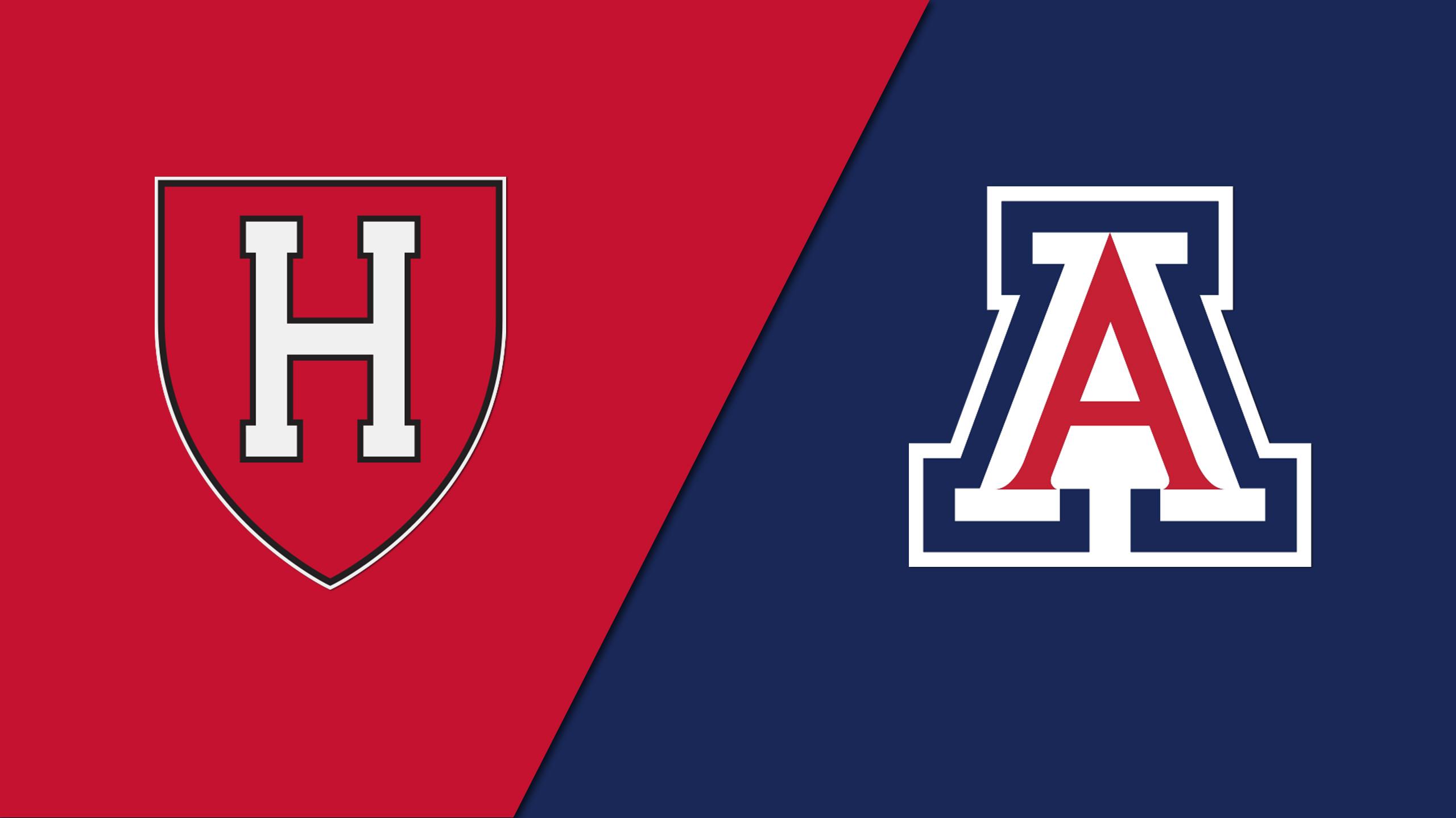Harvard vs. Arizona (Site 5 / Game 2)