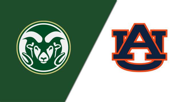 Colorado State vs. Auburn (Site 5 / Game 1) (NCAA Softball Championship)