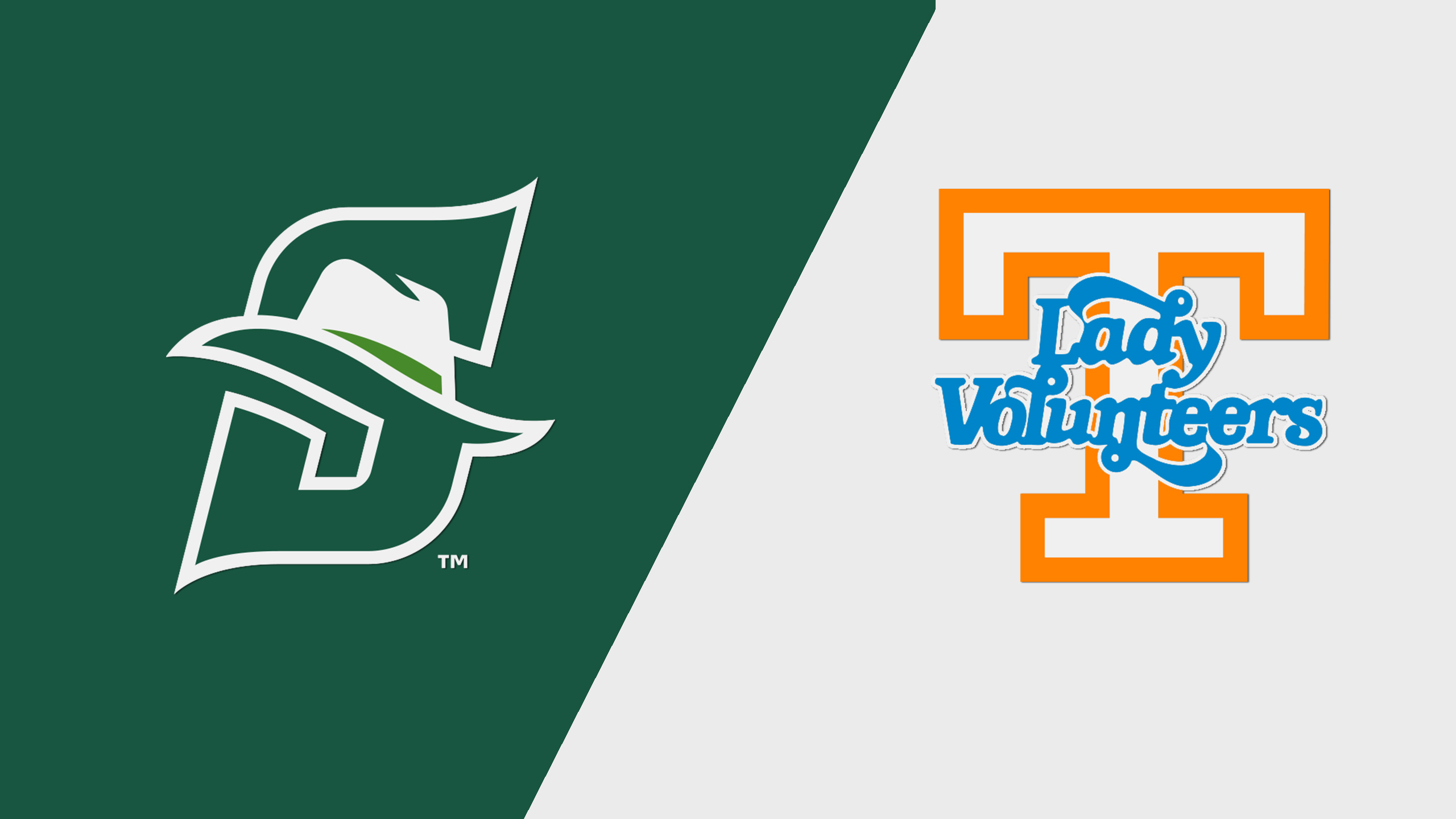 Stetson vs. #9 Tennessee (W Basketball)