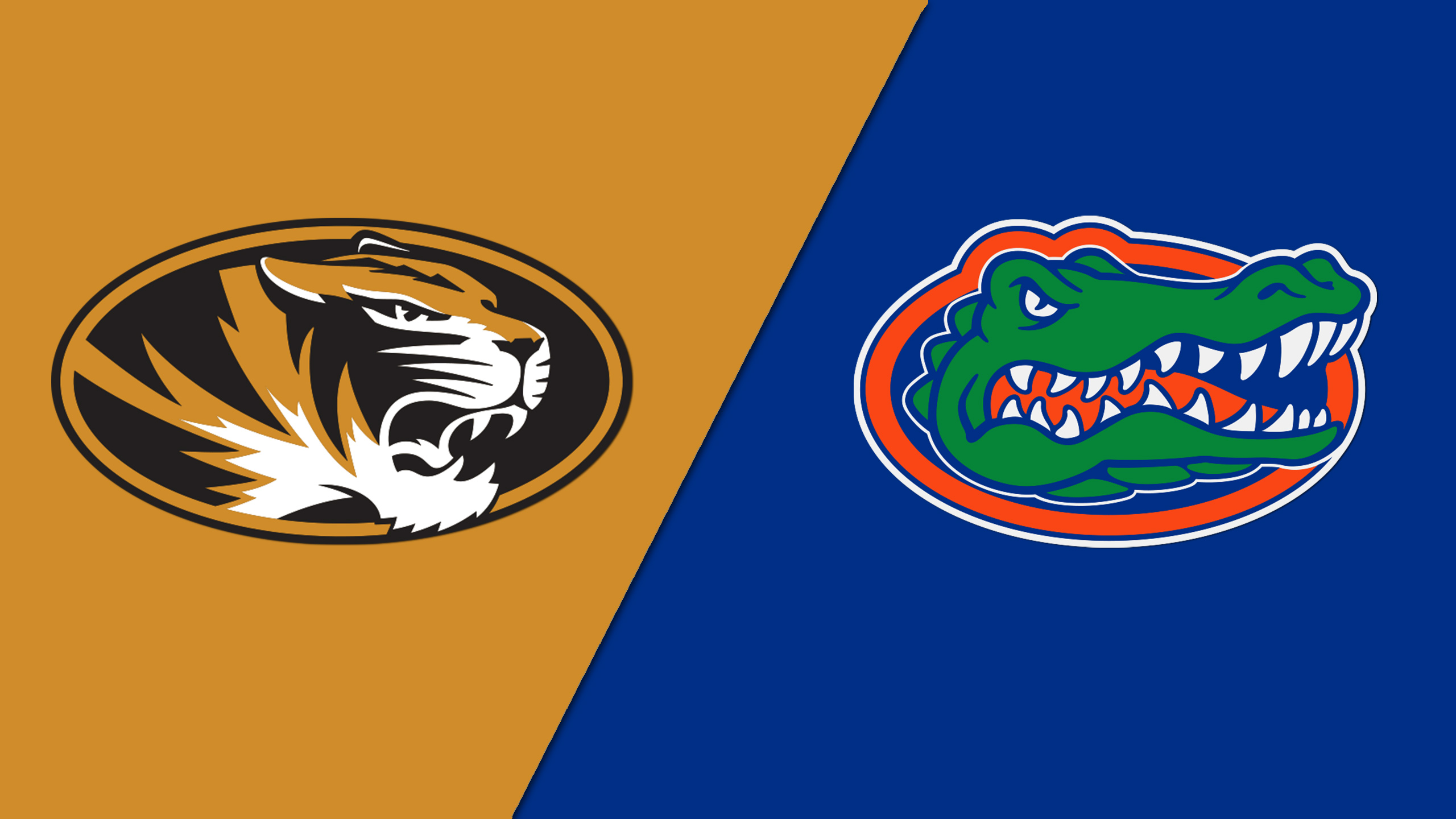 Missouri vs. #11 Florida (W Volleyball)