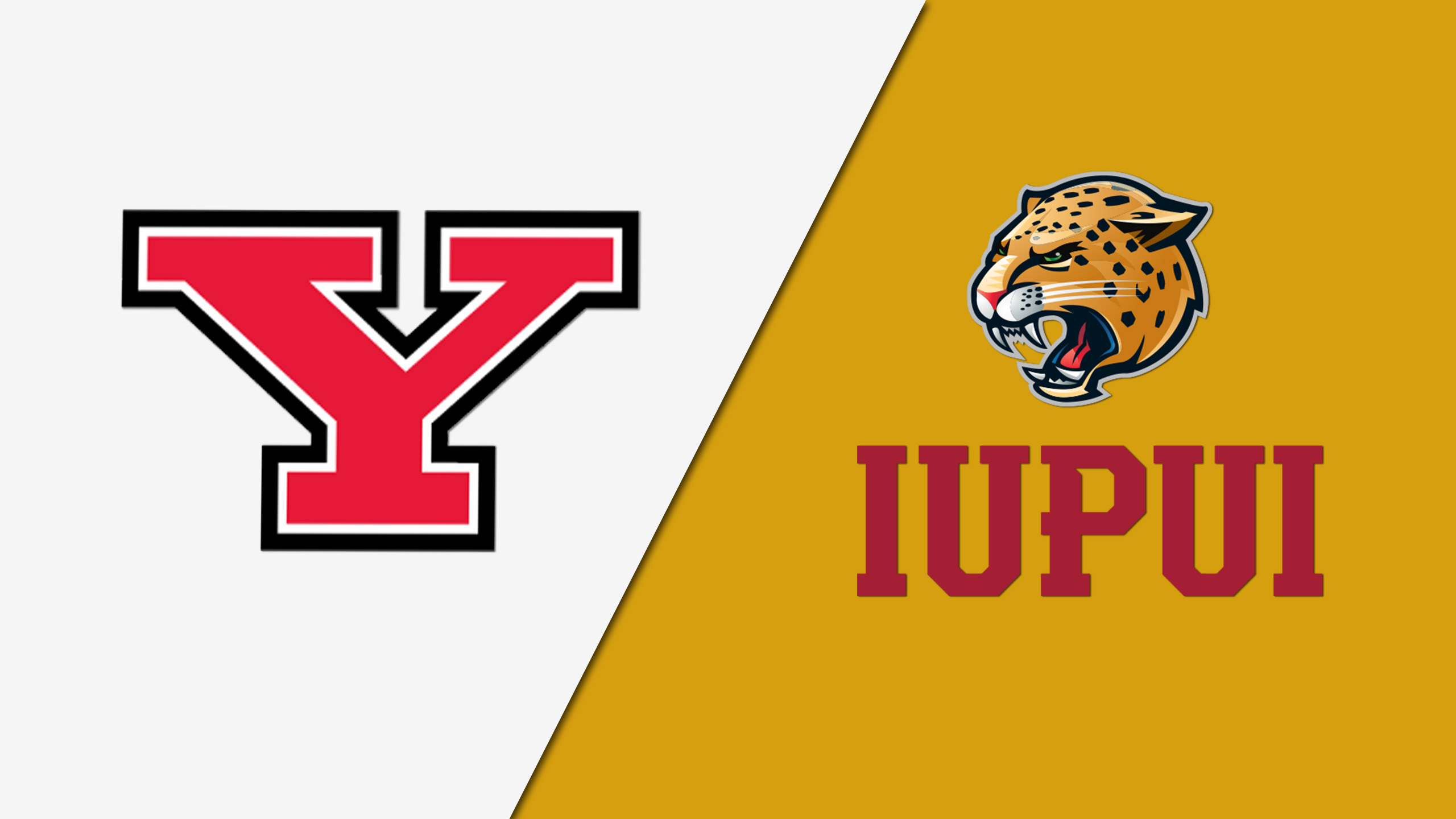 Youngstown State vs. IUPUI (W Volleyball)